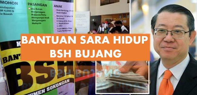 Semakan status permohonan BSH Bujang online