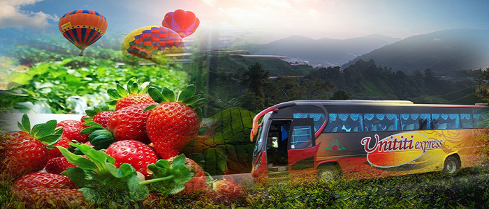 Book tiket bas Penang ke Cameron Highlands online